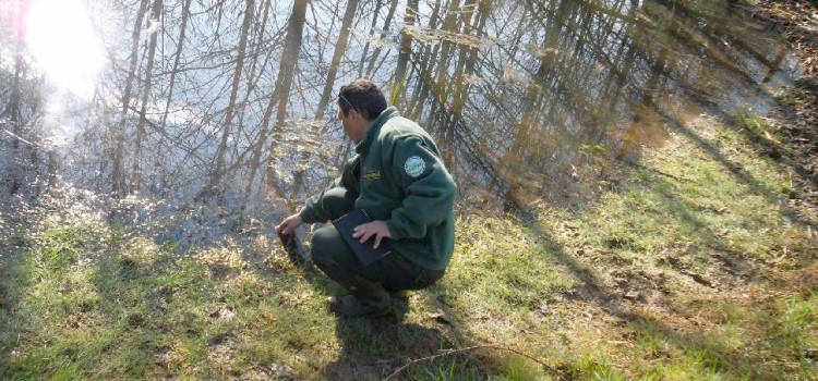 Vuoi diventare Guardia Ecologica Volontaria?